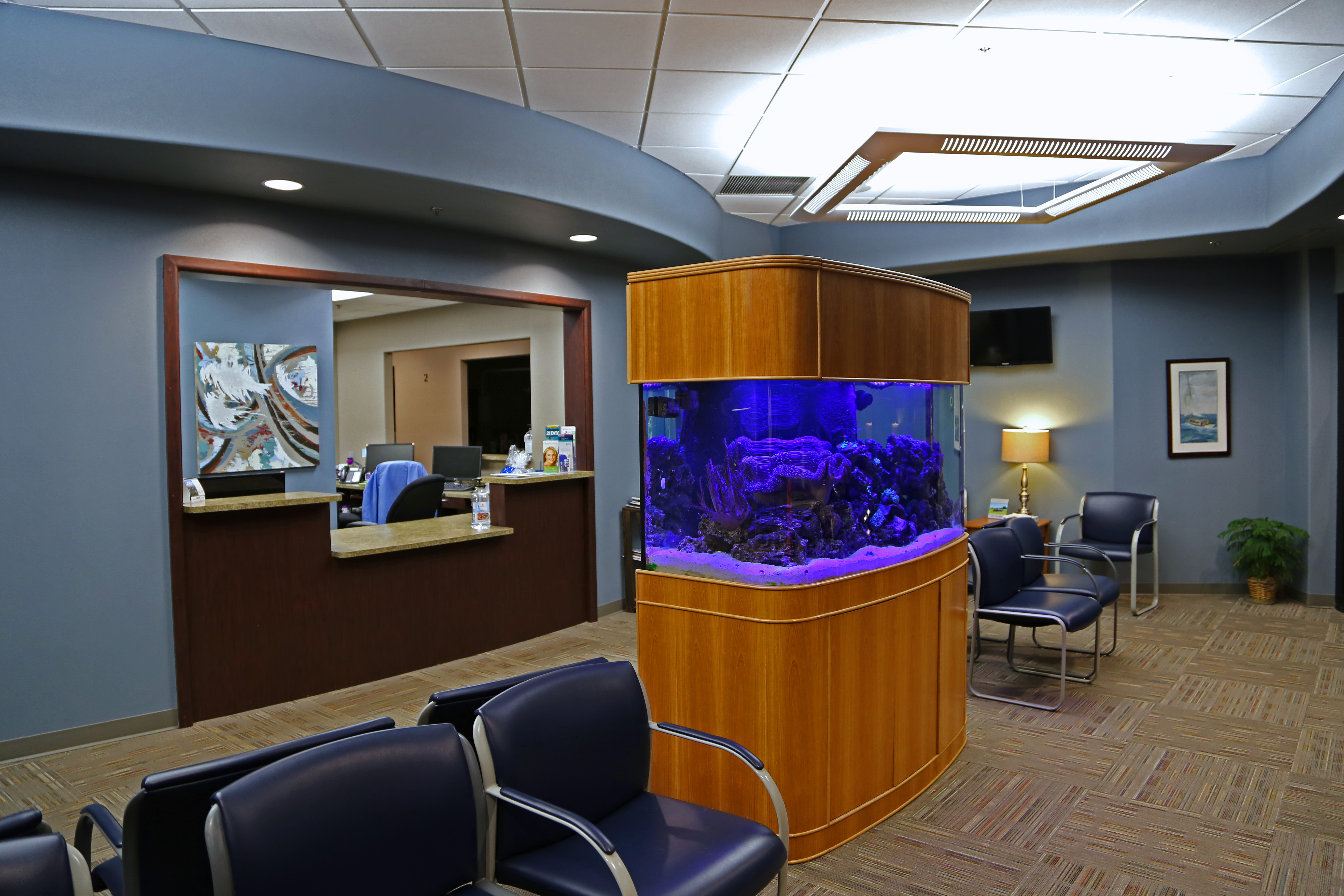 Fish tank for the office - Our Front Office
